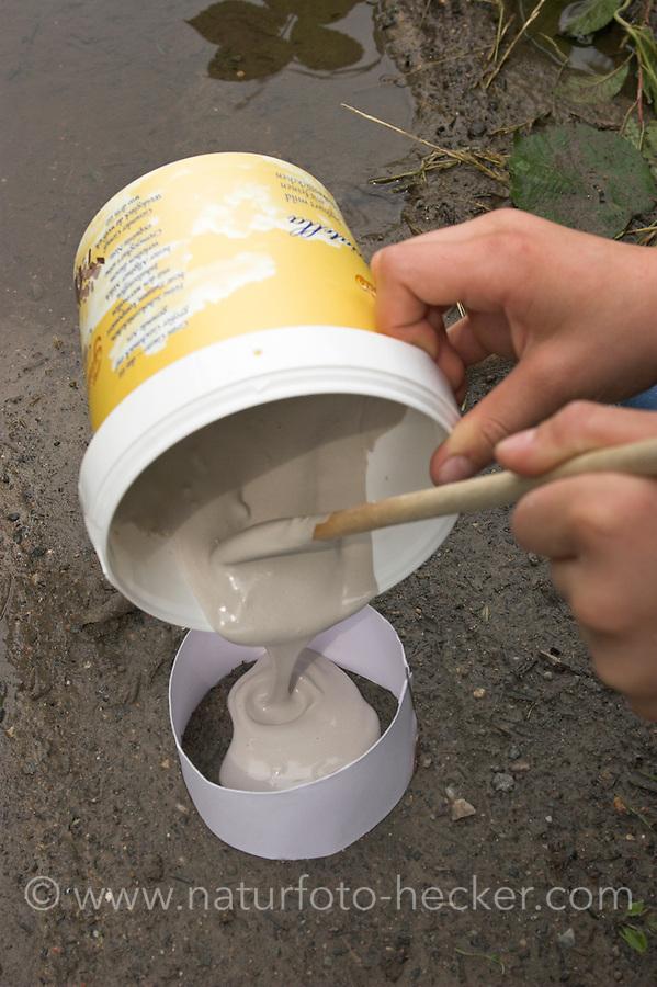Kinder gießen Tierspur aus Gips, Mädchen gießt Gips in den Ring aus Karton über dem Trittsiegel, der Fußspur von einem Reh