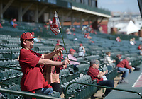NWA Democrat-Gazette/ANDY SHUPE<br />University of Arkansas baseball fan Garrett Brown, 15, of Gentry waves a Razorback flag in the breeze Friday, March 9, 2018, before the start of the Razorbacks' doubleheader baseball game with Kent State in Baum Stadium in Fayetteville. Because of storms forecast for today, the first two games of the three-game series were played Friday with the final game planned for 1 p.m. Sunday.