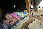 A child sleeps in a family's shelter in the Aamer al Sanad refugee settlement in Kab Elias, a town in Lebanon's Bekaa Valley which has filled with Syrian refugees. Lebanon hosts some 1.5 million refugees from Syria, yet allows no large camps to be established. So refugees have moved into poor neighborhoods or established small informal settlements, such as Aamer al Sanad, in border areas. International Orthodox Christian Charities, a member of the ACT Alliance, provides support for refugees in Kab Elias, including a community clinic.