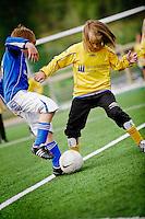 Dale Jente 2001 Fotball