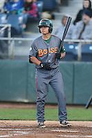 Justin Marra #8 of the Boise Hawks bats against the Everett AquaSox at Everett Memorial Stadium on July 25, 2014 in Everett, Washington. Everett defeated Boise, 2-1. (Larry Goren/Four Seam Images)