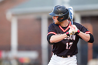 Ryan Lowe (17) of the Davidson Wildcats at bat against the Wake Forest Demon Deacons at Wilson Field on March 19, 2014 in Davidson, North Carolina.  The Wildcats defeated the Demon Deacons 7-6.  (Brian Westerholt/Four Seam Images)