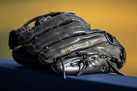 Rawlings baseball glove on March 27, 2019 in Game 2 of the NCAA baseball doubleheader at Ray Fisher Stadium in Ann Arbor, Michigan. Michigan defeated San Jose State 3-0. (Andrew Woolley/Four Seam Images)