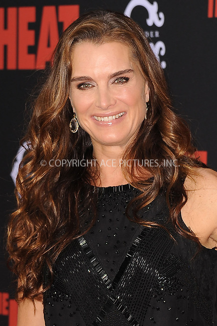 WWW.ACEPIXS.COM<br /> June 23, 2013...New York City <br /> <br /> Brooke Shields attending 'The Heat' New York Premiere at the Ziegfeld Theatre on June 23, 2013 in New York City.<br /> <br /> Please byline: Kristin Callahan... ACE<br /> Ace Pictures, Inc: ..tel: (212) 243 8787 or (646) 769 0430..e-mail: info@acepixs.com..web: http://www.acepixs.com