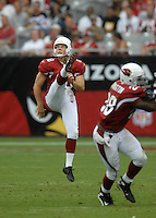 Aug 18, 2007; Glendale, AZ, USA; Arizona Cardinals punter Scott Player (10) against the Houston Texans at University of Phoenix Stadium. Mandatory Credit: Mark J. Rebilas-US PRESSWIRE Copyright © 2007 Mark J. Rebilas