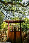 Hakone Estate Japanese Gardens Saratoga Ca.