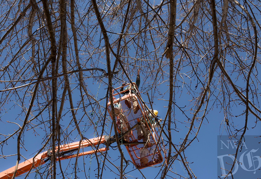 NWA Democrat-Gazette/CHARLIE KAIJO Bentonville Parks and Recreation Department workers Jimmy Hutchinson and Michael Vanhorn (from left) take down holiday lights, Monday, January 7, 2019 at the downtown square in Bentonville. <br />