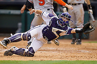 Texas Christian Horned Frogs catcher Kyle Bacak #6 lunges to catch a wide throw at home plate during the game against the Sam Houston State Bearkats at Minute Maid Park on February 28, 2014 in Houston, Texas.  The Bearkats defeated the Horned Frogs 9-4.  (Brian Westerholt/Four Seam Images)