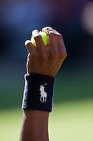 23-6-09, England, London, Wimbledon, Ballboy holding up a ball,