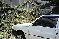 SAO PAULO, SP, 11.09.2013- Um tronco de uma arvore caiu sobre um carro na Rua Alameda Lorena 946 Jardima Paulista não ouve ferido mais a Rua esta interditada- Adriano Lima / Brazil Photo Press