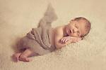 Mackenzie K Newborn