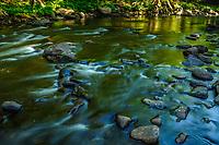 West Branch, Sacandaga River, Silver Lake Wilderness Area, Adirondack Forest Preserve, New York