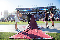 Homecoming queen, Shawanda Brooks right before receiving her crown.<br />  (photo by Beth Wynn / &copy; Mississippi State University)