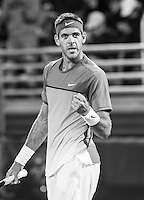 DelPotro Returns