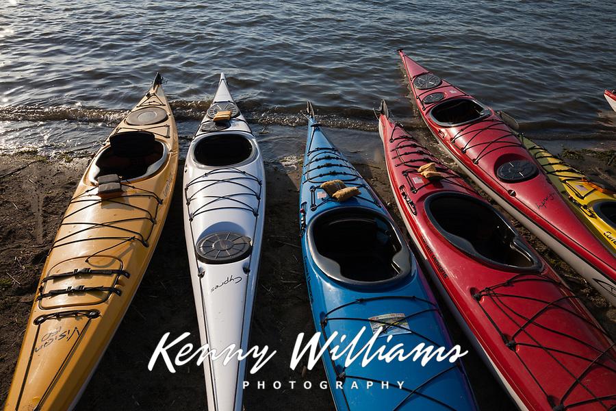 Colorful Kayaks, Northwest Paddling Festival, Lake Sammamish State Park, Issaquah, Washington State, WA, America, USA.