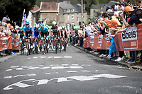 peloton up the infamous Mur de Huy.<br /> <br /> 83th Flèche Wallonne 2019 (1.UWT)<br /> 1 Day Race: Ans – Huy 195km<br /> <br /> ©kramon