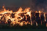 20161015 3800 Strohballen fallen Flammen zum Opfer
