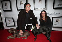 Josh Wolf05 November 2017 - Hollywood, California - Bob Saget, Rebecca Corry. 7th Annual Stand Up For Pits held at Avalon Hollywood. <br /> CAP/ADM/FS<br /> &copy;FS/ADM/Capital Pictures