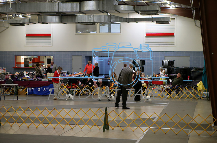 The papillon specialty show in the exhibit hall during the Bonanza Kennel Club of Carson City's 24th Annual Dog Shows and Trials at Fuji Park in Carson City, Nev., on Friday, Sept. 27, 2013. <br /> Photo by Cathleen Allison/Nevada Photo Source