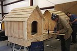 Carpentry - Dog House building