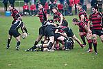 FRANKFURT, GERMANY - DECEMBER 01: North Sea Cup rugby match between SC Frankfurt 1880 (red-black) and Kituro Schaerbeck (black) at the SC Frankfurt 1880 sports ground on December 01, 2012 in Frankfurt, Germany. The match ended 19-15. (Photo by Dirk Markgraf)