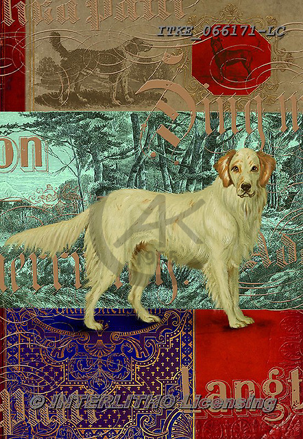 Isabella, REALISTIC ANIMALS, REALISTISCHE TIERE, ANIMALES REALISTICOS, paintings+++++,ITKE066171-LC,#a#, EVERYDAY ,dogs ,collage