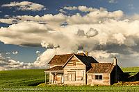 Abandoned farmhouse, Weber House, Palouse region of eastern Washington.