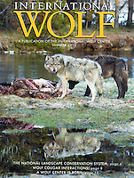 Cover International Wolf Magazine by Daryl L. Hunter