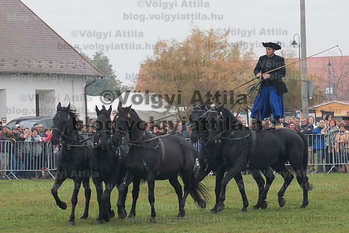 Viewers watch a herdsman riding five horses together standing on the back of one also called a Puszta five during a celebration of the end of the grazing season in the Great Hungarian Plains in Hortobagy, 200 km (124 miles) east of Budapest in Hortobagy, Hungary on Oct. 21, 2017. ATTILA VOLGYI