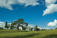 Craigie Hill Golf Course, Perth, Perthshire