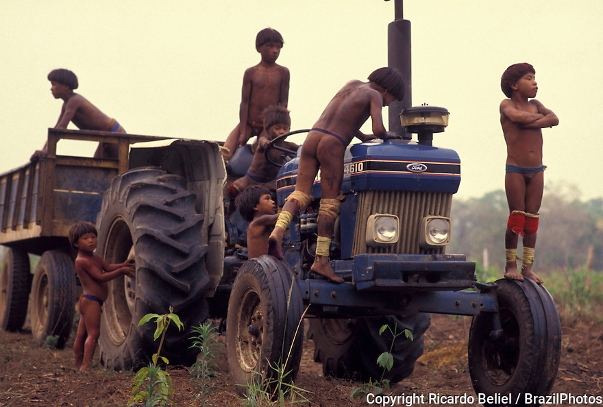 Acculturated indigenous children playing on the tractor - multi-culturalism, mix of traditional culture ( body painting, colorful adornments, nude body ) and influence of the white culture ( farming, agriculture, machinery ) - technology improving native life, technology making daily life easier - Yaulapiti indigenous People, Xingu National Park, Amazon rainforest, Brazil.