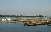 Nr Manaus, Amazonas State, Brazil; logs floating in the river with loggers' boats.