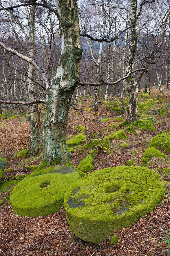 Millstones at Lawrence Field, Peak District National Park, Derbyshire, UK. April.