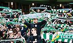 Stockholm 2014-04-14 Fotboll Superettan Hammarby IF - Degerfors IF :  <br /> Hammarby supporter med halsduk<br /> (Foto: Kenta J&ouml;nsson) Nyckelord:  HIF Bajen Degerfors supporter fans publik supporters