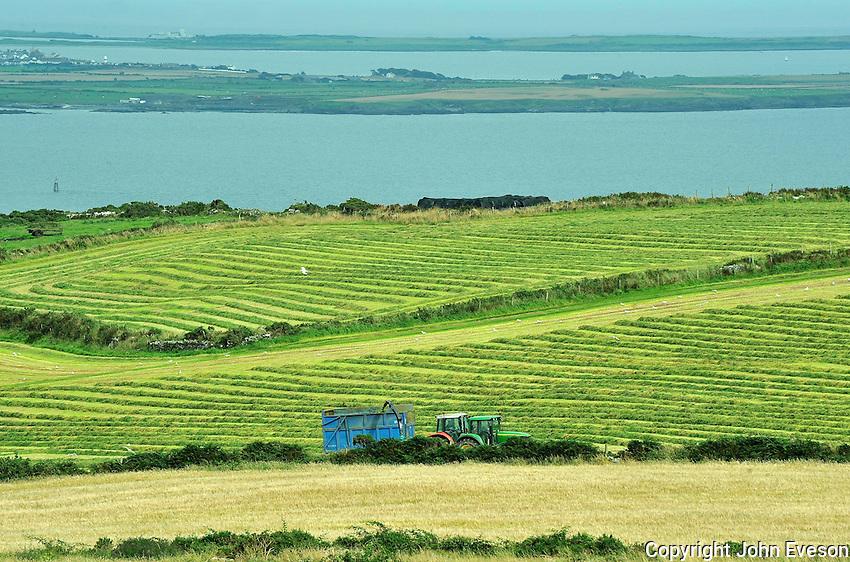 Forage harvesting at Cregneash, Isle of Man....Copyright..John Eveson, Dinkling Green Farm, Whitewell, Clitheroe, Lancashire. BB7 3BN.01995 61280. 07973 482705.j.r.eveson@btinternet.com.www.johneveson.com