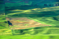 Sunrise over farmland with mostly wheat fields. The Palouse near Colfax, Washington