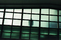 Window with figure