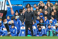 Antonio Conte (Manager) of Chelsea looks on during the Premier League match between Chelsea and Newcastle United at Stamford Bridge, London, England on 2 December 2017. Photo by David Horn.