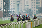 Horses compete during the Race 7, Cotton Tree Handicap, at the Sha Tin Racecourse on 03 September 2017 in Hong Kong, China. Photo by Marcio Rodrigo Machado / Power Sport Images