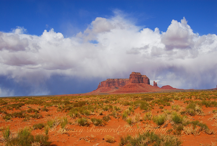&quot;MONUMENT&quot;<br /> <br /> Out of the desert floor a desert monument, crowned by billowy white clouds, thrusts up into the deep blue sky. This is Navajo country at Monument Valley Arizona
