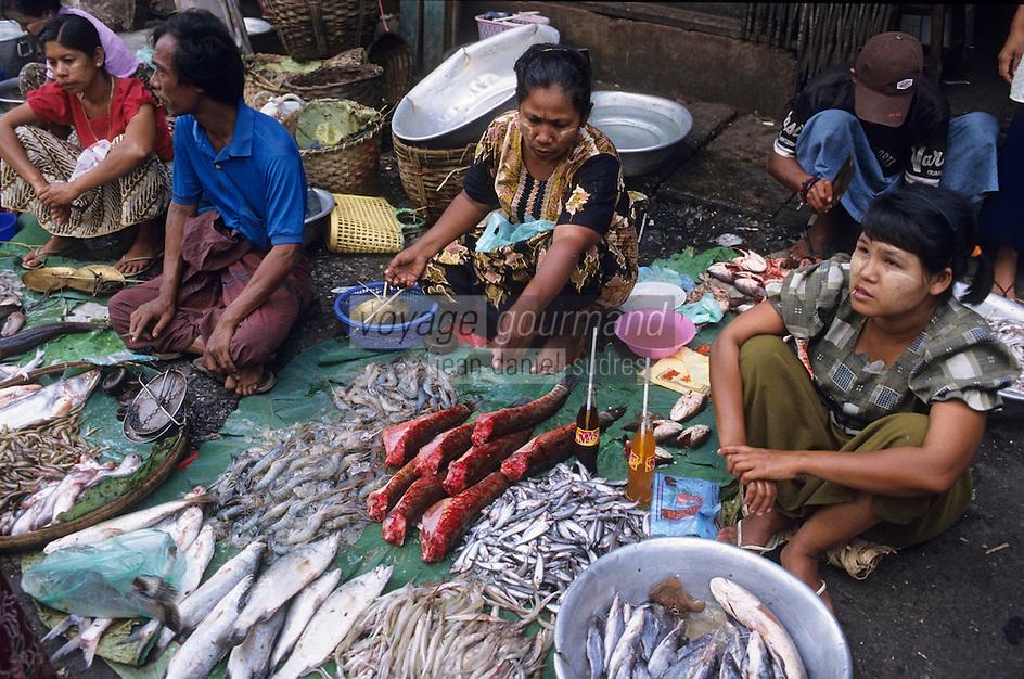 Asie/Birmanie/Myanmar/Yangon: Theingyi Zei Market ou marché indien - Détail d'un étal de poissons