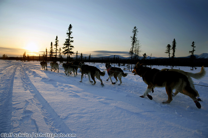 Aily Zirkle drives her dogs into the setting sun a couple miles after leaving the Kaltag checkpoint on Saturday March 9, 2013...Iditarod Sled Dog Race 2013..Photo by Jeff Schultz copyright 2013 DO NOT REPRODUCE WITHOUT PERMISSION