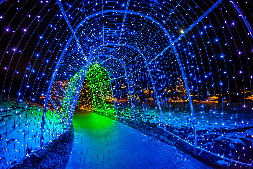 A tunnel of lights, A Hudson Christmas (holiday light show at Hudson Gardens), Littleton, Colorado USA.