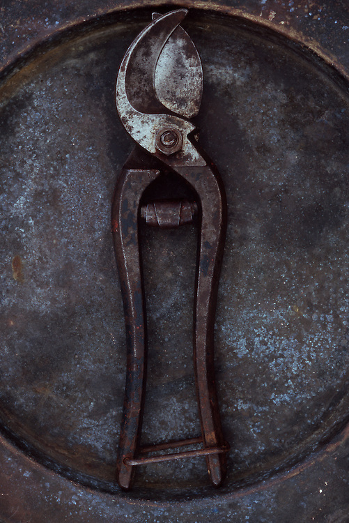 Pair of old well-used but maintained secateurs lying on tarnished metal plate