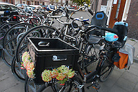 AMSTERDAM-HOLANDA- Bicicleta adornada con flores en un aparcadero de bicicletas./ Decorated bike in a bike parking.  Photo: VizzorImage/STR