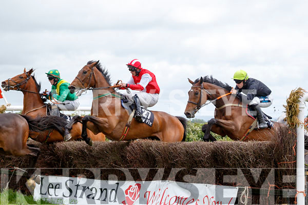 Winning horse Ballinslea Bridge with Sean Leahy on board (far left) jumps the last fence in the 2nd race at Ballybeggan race track point to point meeting last Saturday organised by the North Kerry Harriers.