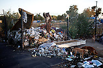 Dogs feed on trash at a homeless encampment in Fresno, Calif., September 24, 2012.