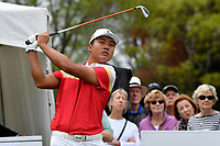 Lin Yuxin (China) in action during the Asia- Pacific Amateur Championship at Royal Wellington Golf Club, Wellington, New Zealand on Sunday 29 October.<br /> Photo by Masanori Udagawa. <br /> www.photowellington.photoshelter.com