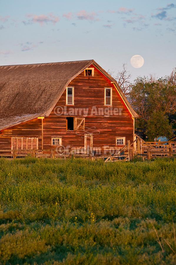 Full moon rises over weathered wooden barn near Anatone, Wash.