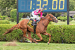 #6 Got Stormy winsthe FourStarDave H ridden by Ricardo Santana Jr, trained Mark Casse . Aug 10,2109:during racing at Saratoga Race Course in Saratoga Springs, New York. Robert Simmons/Eclipse Sportswire/CSM